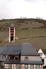Bacharach vineyards II (beketchai) Tags: rhineriver bacharach