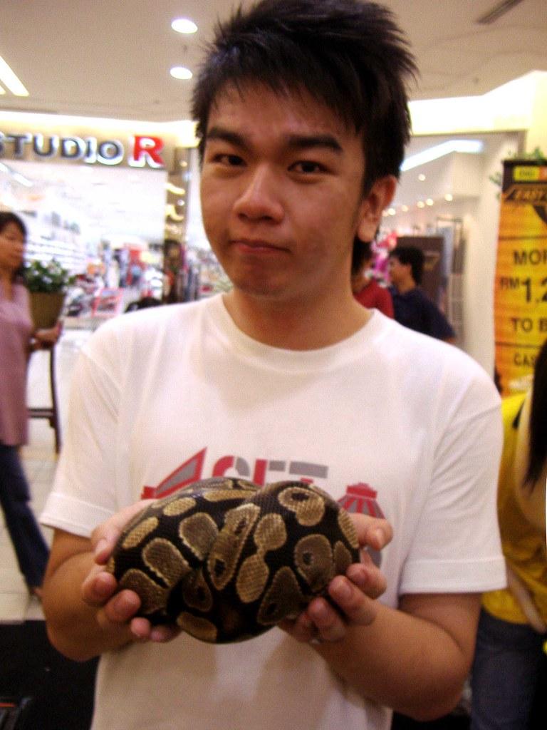 me vs snake