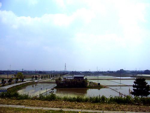 関宿城付近
