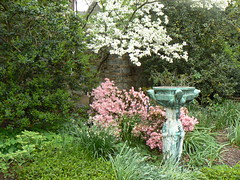 Statuary and spring blooms in Bishop's Garden
