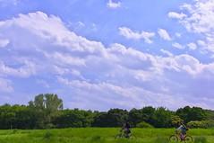IMGP9970 (takahashi_4) Tags: blue light sky cloud sun white ecology weather hope idea star office god outdoor background space religion internet communication business success expectation highplace fineweather alens acloud theachievement sunlightisgood on1st isheaven beautifulbreak oxyjean aseaofcloudswhicharehighinthesky happinessisabstractpeacefullythen andtoshineonaday colorofthesunburn warmingit cloudedmeteorology pureultravioletrays beautytreatmentsalon shiningenvironment thoughttoflyindigo areflectionofthewholeworldinthesummer