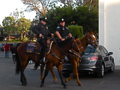 I think they're posing for the camera? (Ari Lynn Day) Tags: california carnival horses people festive fun evening funny afternoon cops candid saturday posing police mounted annual orangecounty macho gardengrove strawberryfestival memorialdayweekend anaheimpolice