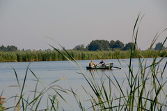 Calma i tranquilitat a Holanda / Relax in the Netherlands (SBA73) Tags: lake holland water netherlands grass boat agua eau wasser barca nederland row rowing holanda aigua bot 2007 waterland lowcountries llac holysloot herbes paisesbajos hierbas remar rems pasosbaixos holysloterdie thechallengefactory