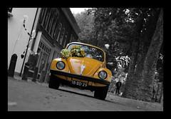 Wedding Beetle (buteijn) Tags: wedding holland vw dorpsstraat martin beetle nederland els vreeswijk nieuwegein huwelijk kfer kever weddingcar trouwauto