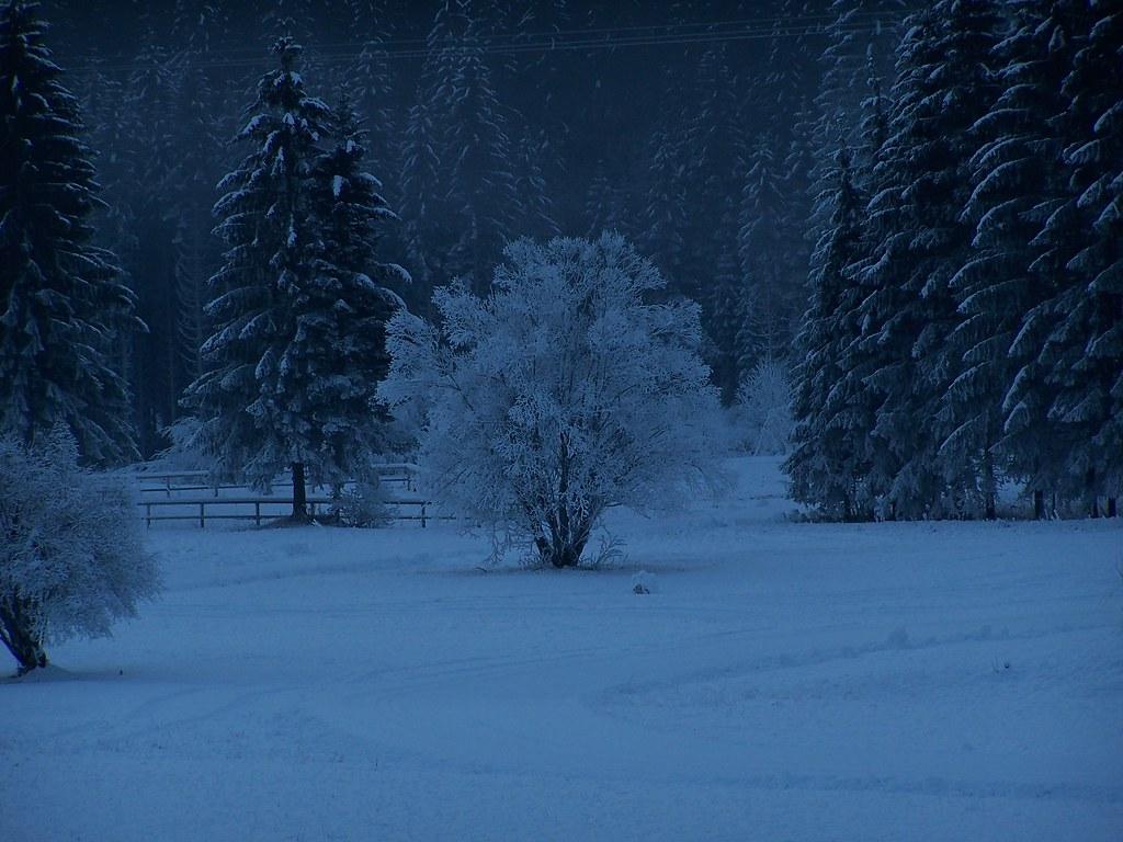 Neve a Falcade