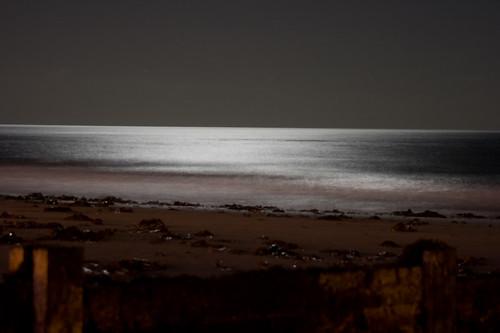A beach in moonlight