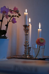 Pink light (Karin A ~) Tags: pink white orchid vintage lights rosa ranunculus ranunkel ljus orkidé vit