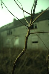 The stick (Kelsey Link) Tags: house abandoned cheshire haunted link kelsey