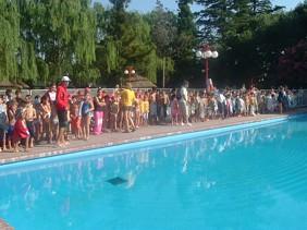 1º Encuentro de Escuelas de Verano en la pileta del Club Estudiantes