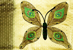 Catch me if you can says the butterfly