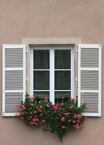 French Window Shutters and Flowers