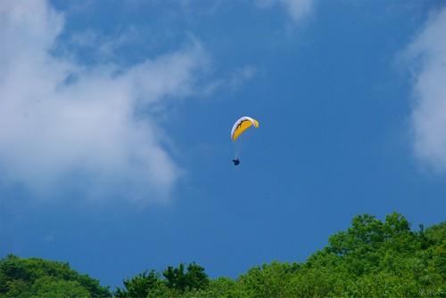 20080518パラグライダー