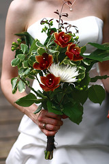 The Bride's Bouquet (Manincognito) Tags: flowers red white flower green calgary canon rebel bride bouquet xti