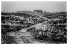house in the dunes (Der Zeit die Augenblicke stehlen) Tags: bw dänemark dünen eos700d hth56 haus landscape landschaft nordsee ringkobing sand thomashesse winter contrast monochrom sw
