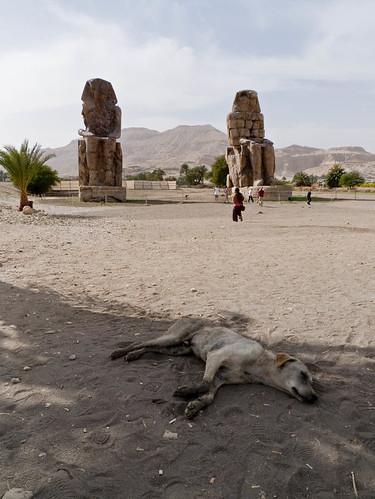 P1040205_Luxor_Colossi_Of_Memnon