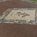 Belfast City - Mays Field