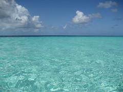 Venezuela - The Caribbean World (danieleb80) Tags: mar mare venezuela dream caribbean losroques caraibi caribbeansea 10faves pacefull caribbeanworld paradisesea skyandocean photoexplore flickrstas