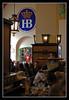 Hofbräuhaus, München (matt :-)) Tags: beer munich münchen bayern bavaria mas monaco brewery hofbrauhaus bier munchen mattia birra cervecería muenchen hb hof brasserie hofbrau platzl baviera hofbräuhaus brauerei hofbräu cervejaria 50mmf14d birreria birrificio mywinners nikond80 staatliches consonni mattiaconsonni