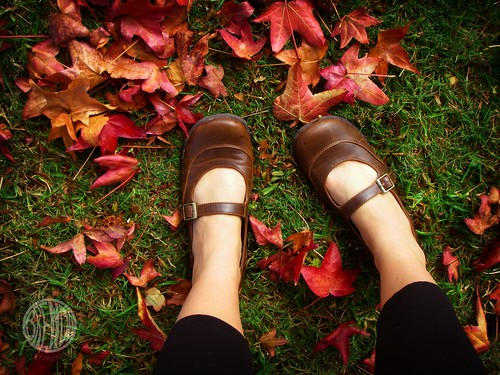11:2 Shoes in Fall