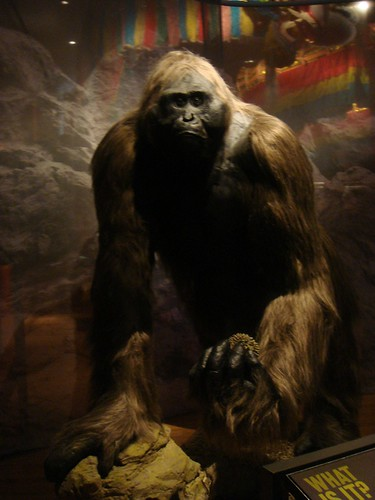 bigfoot fact or fiction Researchers released new information from the sasquatch genome project claiming there is now dna evidence proving bigfoot is indeed no longer a myth, but rather a human hybrid living among us.
