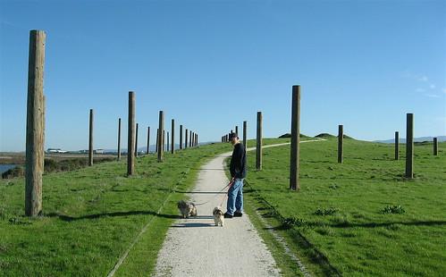 Bixby pole garden