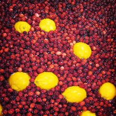 Fresh Cranberries (The Rocketeer) Tags: lomoized water fresh cranberries oranges