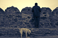 Looking Into The Other Side (Luis Montemayor) Tags: sky dog mexico perro cielo fernando realdecatorce dflickr dflickr180307