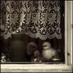 The never-changing window II (moggierocket) Tags: wood old stilllife stuffedtoy bird window square cow peeling decay dirty stuff vase curtains trophy items desolate peeking windowsill knickknacks numbertwo lacecurtain part2 d80 nikond80 artlibre neverchanging