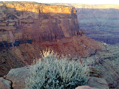 04122007555 (Laura Pastori) Tags: deadhorsepoint canyonlandsnationalpark archesnationalpark delicatearch mesaarch laurapastori pitoccio