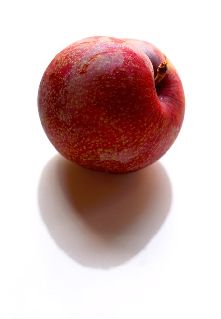 Blood Plum