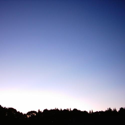 【写真】Morning glow