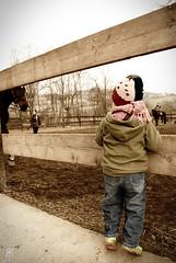Il sogno è sempre dietro l'angolo... (rcrj.g) Tags: cavalli monferrato rcrg littler caiafederico