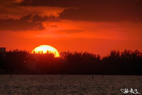 Bigma Sunset