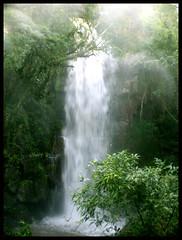 dream (Albert Aguiar) Tags: parque paran argentina brasil albert unesco waterfalls cataratas nacional iguaz oeste iguau fozdoiguau ibama rioiguau whbrasil albertaguiar patrimniomundialnaturaldahumanidade
