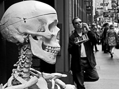 I Just Have To Make One More Call, He Said (an untrained eye) Tags: nyc newyork topf25 topv111 topv2222 skeleton skull topf50 topv555 topv333 unitedstates topv1111 topv999 streetphotography evolution topv222 creativecommons bones blogged topv777 bandw topv3333 springstreet mayombe interestingness177 evolutionnaturestore manonmobile rabbitrabbitrabbitrabbit thebaneofmodernexistence betweengroomeandmercer thoughabitpriceyitsthebestplacetostockuponanimalskeletonssaysnyccommatteroffactly 4635itscheapertokillyourownhumanandburyitinananthill wwwevolutionnyccomifyourecurious skeletonsavailablefrom279to4635 explore26may08 fds24hdrkaranka dwcffstreet