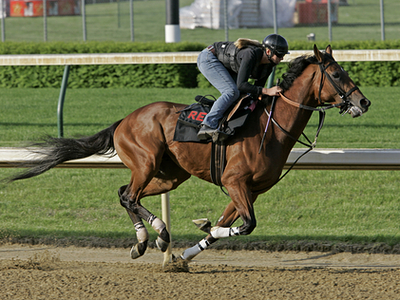 horses at belmont ncaa over under
