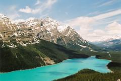 Peyto Lake (jm!) Tags: canada 35mm peytolake icefieldsparkway