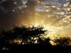Twilight (**لحظات **h.q) Tags: twilight غروب طلح