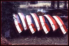 Boote 2007-10-06_10-15-59 (dieter_tinchen) Tags: boat boote luxembourg bateau nikonf luxemburg peche picnik etang weiher fischen roseawards