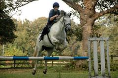 Jump! (Rafal Bergman) Tags: uk school horse girl wales jump ride cardiff young practise mywinners