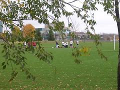 frisbee football