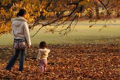 Mother and Child (mrhayata) Tags: autumn tree girl leaves japan garden geotagged tokyo blog shinjuku child mother 日本 新宿御苑 東京 gyoen 少女 新宿区 東京都 mrhayata geo:lat=356861275 geo:lon=1397125558