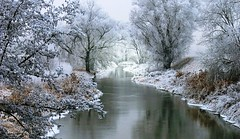 Winterlandschaft * winterlandscape - Zur Abkhlung (Der Kremser) Tags: winter river landscape sterreich photographer excellent awards landschaft niedersterreich breathtaking kamp 2007 winterlandschaft loweraustria naturesfinest wonderfulworld flus kamptal november2007 platinumphoto naturefinest diamondclassphotographer flickrdiamond ilovemypic life~asiseeit