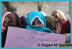 DSC_5342 (Sajjad Ali Qureshi) Tags: pakistan protest peshawar karachi lahore ppp islamabad photojournalist multan rawalpindi musharraf quetta bhutto benazir thenation nawazsharif nowshera sajjadaliqureshi womenvoters pmln zardari pakistanimedia pakistanelection shahmehmoodqureshi ameenfahim