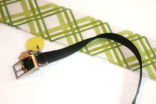 Collar & Fabric
