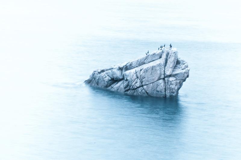 Cormorant sur un rocher iceberg