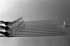 resistance (emanuele_f) Tags: agfaapx100 contaxax film carlzeiss splanar 60mm macro closeup set forks rodinal r09 125 blackandwhite analog