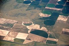Crop Circles (dominiquesainthilaire) Tags: nikon nikond80 plane view fields montana usa crops circles cultures champs cercles vuedavion vert green brun brown land terrain