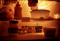 what's for dinner? (intheclearkid) Tags: leica film fuji kodak bokeh availablelight voigtlander trix 40mm refrigerator provia e100vs ilford m6 nokton wideopen filmforlife voigtlandernokton40mmf14mc