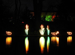 Christmas at Centennial Park #2: Duck lights and reflection